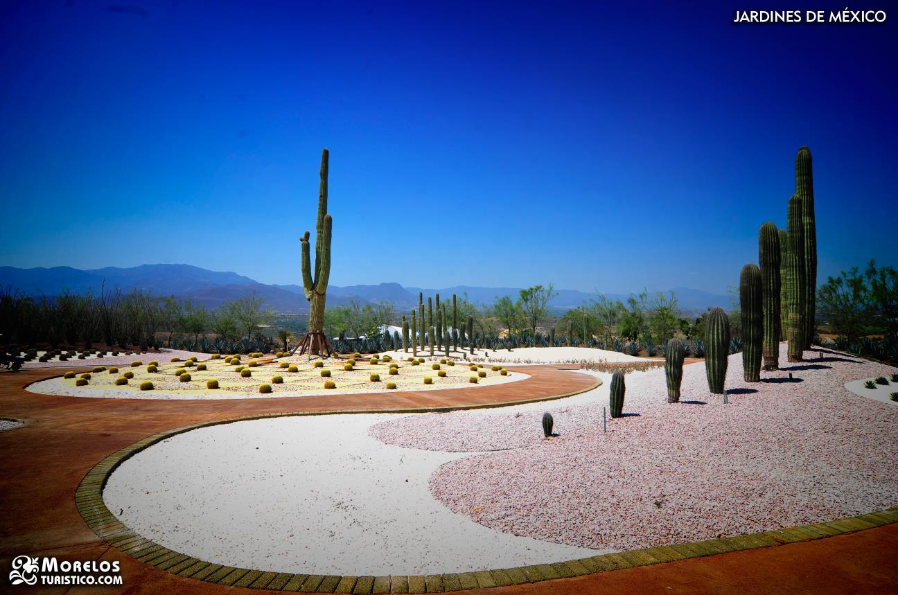 Index of portal imgsfe mas fotos de jardines de mexico for Jardines mexico