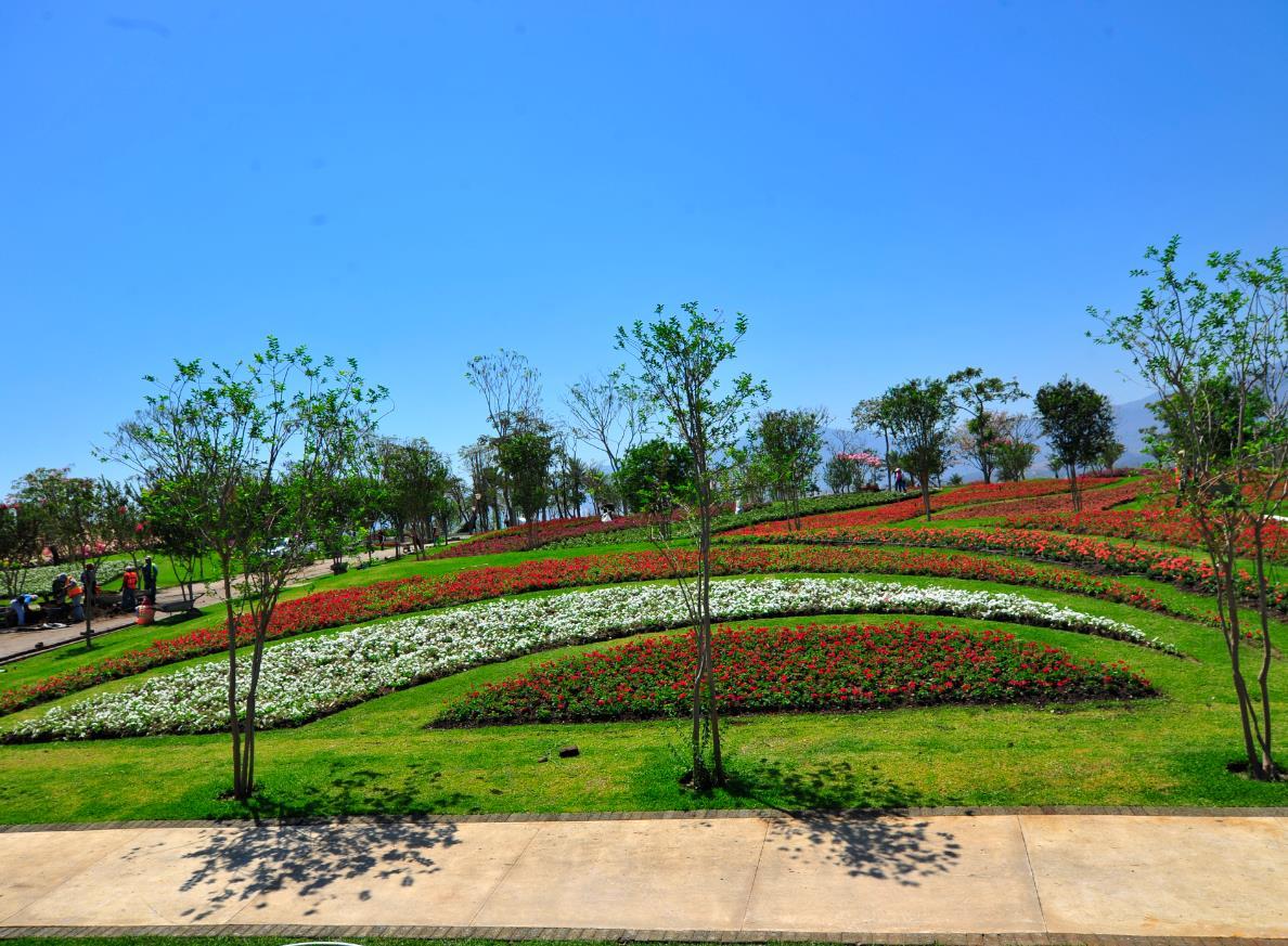 Jardines de m xico en tequesquitengo morelos 8 abanico de for Los jardines de arbesu